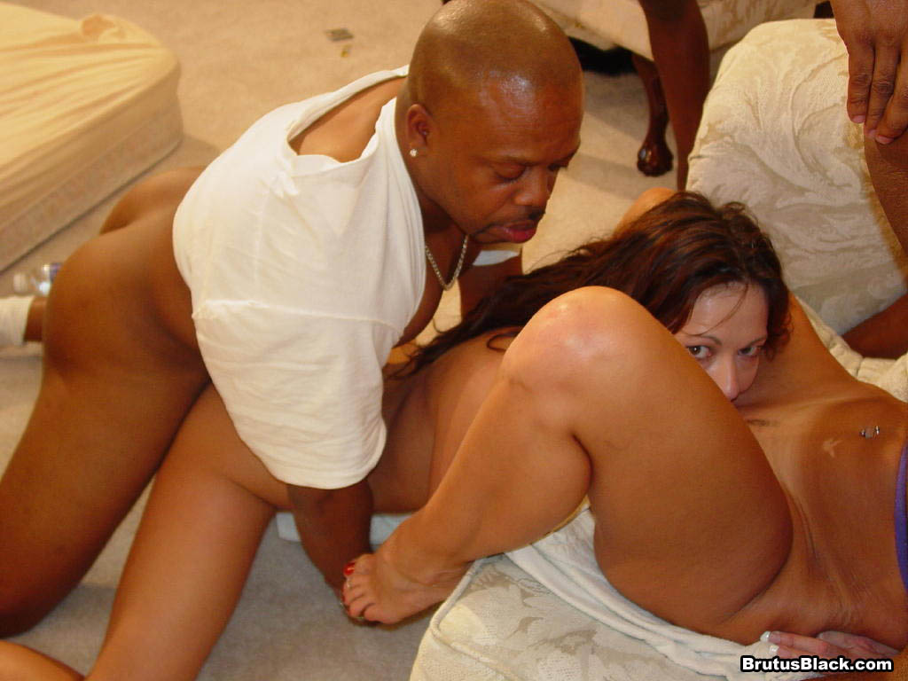 ebony shemales fucking guys hung